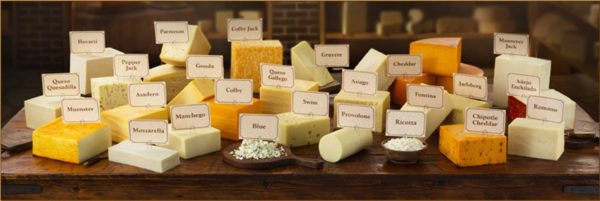 Intolerance & Allergy to Cheese & Dairy