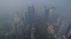 Allergies & Pollution