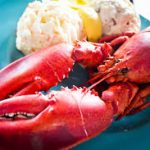 Shellfish Allergy Symptoms