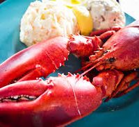 lobster intolerence allergy