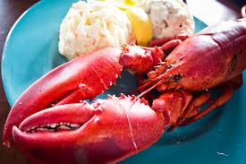lobster allergy symptoms