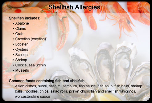 Seafood allergy allergies list for Can you be allergic to fish