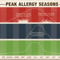 rp_allergy-guide-2-300x214.jpg