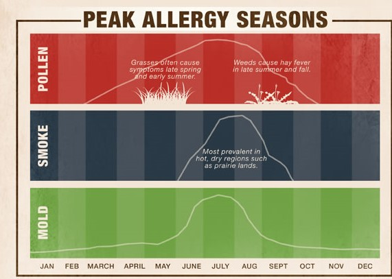 peak season allergies