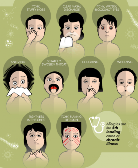 allergy-info-symptoms