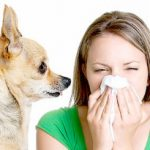 3 Main Ways to Manage an Allergy